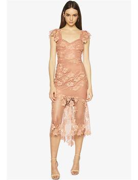 Lucy Lace Dress by Bardot