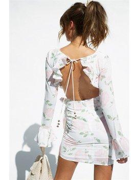 Hollie Dress by Sabo Skirt