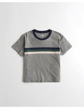 Crop Easy Crewneck T Shirt by Hollister