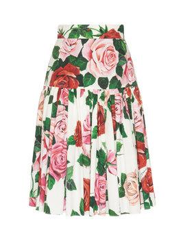Ruffled Drop Waist Floral Cotton Poplin Midi Skirt by Dolce & Gabbana