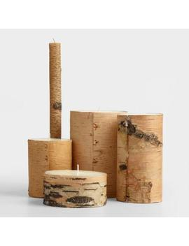 Natural Birch Bark Candle by World Market