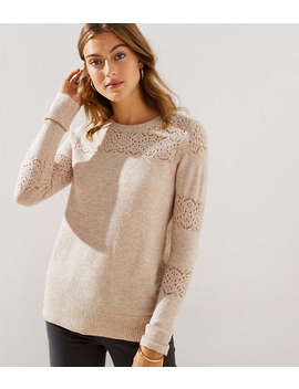 Lacy Pointelle Sweater by Loft