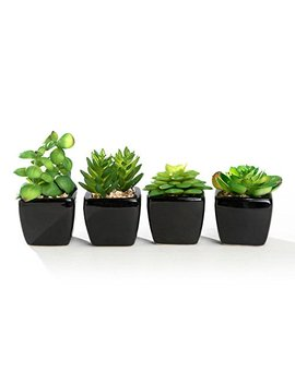 Nattol Modern Mini Artificial Succulent Plants Potted In Cube Shape White Ceramic Pots For Home Decor, Set Of 4 (Black) … by Nattol