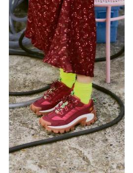 """Cat Footwear – Sneaker """"IntruderBiking"""" In Rot by Cat Footwear Shoppen"""