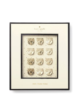 Owl Push Pins   Set Of 12 by Kate Spade New York