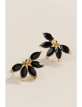 Tara Cubic Zircona Fan Studs In Black by Francesca's