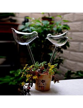 2pcs Bird Shape Hand Blown Clear Glass Self Watering Durable Mini Transparent Bird Shape Plant Watering Siyaglass by Siyaglass