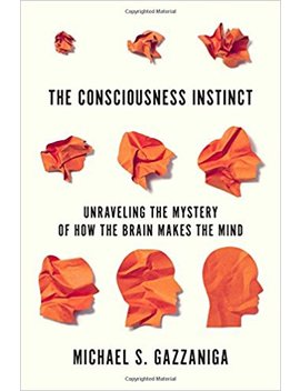 The Consciousness Instinct: Unraveling The Mystery Of How The Brain Makes The Mind by Michael S. Gazzaniga