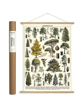 Cavallini Papers & Co. Vintage Arboretum Hanging Poster Kit, Multi by Cavallini Papers & Co.