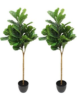 (2 Pack) 5 Foot Fiddle Leaf Fig Tree   Realistic Artificial Home Decor (2) by Silk Road Home