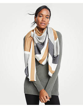 Colorblock Fringe Scarf by Ann Taylor