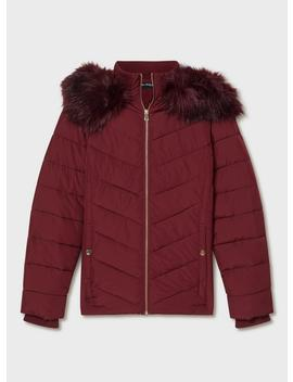 Burgundy Hooded Puffer Coat by Miss Selfridge