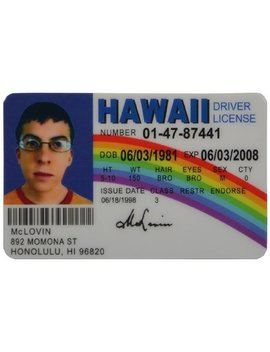 Mc Lovin Fun Fake Id License Model: Car/Vehicle Accessories/Parts by Incrediblegifts