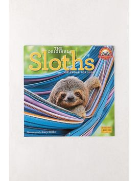 2019 Sloths 12 Month Wall Calendar by Urban Outfitters