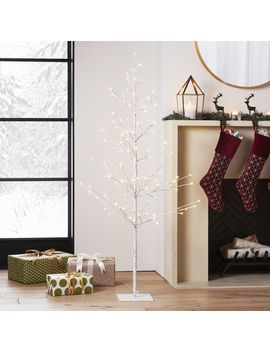 Led 5' Birch Tree by Crate&Barrel