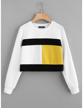 Color Block Raglan Sleeve Sweatshirt by Shein