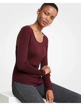 Ribbed Curved Hem Sweater by Ann Taylor