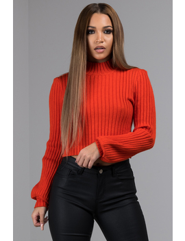Truth Be Told Ribbed Open Back Turtleneck Sweater by Akira