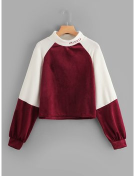 Raglan Sleeve Color Block Sweatshirt by Shein
