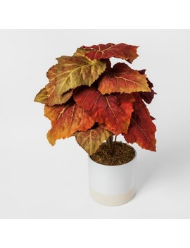 Faux Autumn Begonia Plant In White Pot   Threshold™ by Shop Collections