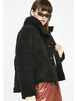 Midnight Teddy Betty Puffer Jacket by Very J