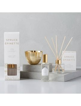 Naturalist Homescent Collection   Spruce by West Elm