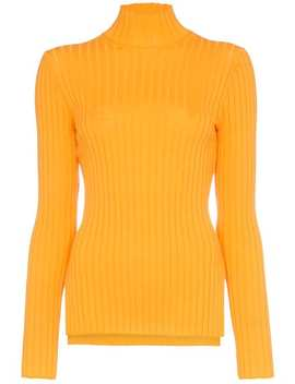 High Neck Long Sleeve Fitted Rollneck by Sjyp