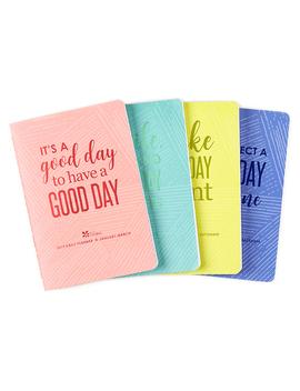 Petite Planner Daily Planner Bundleviewed by Erin Condren