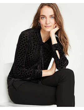 Velvet Dot Tie Neck Blouse by Ann Taylor