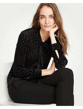 velvet-dot-tie-neck-blouse by ann-taylor