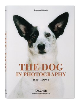 The Dog In Photography 1839 Today by Neiman Marcus