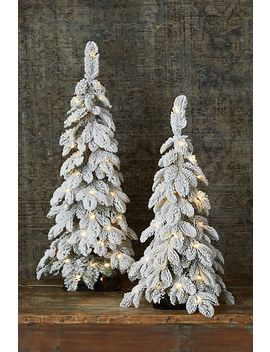 Faux Snowy Pre Lit Led Tabletop Tree by Anthropologie