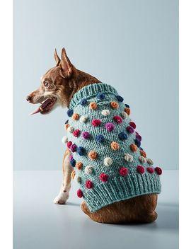 Pom Pom Dog Sweater by Anthropologie
