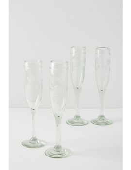 Agave Flutes, Set Of 4 by Anthropologie