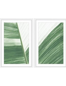 Marmont Hill 'ventura Diptych' Framed Painting Print by Marmont Hill