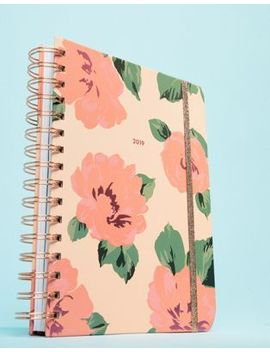 Ban.Do   Planner Medio Con Calendario Annuale 2019 E Rose by Asos