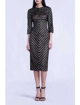 Mesh Paneled Midi Dress by Isabel Garcia