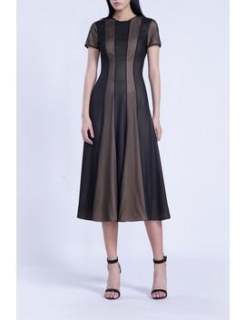 Short Sleeve Mesh Midi Dress by Isabel Garcia
