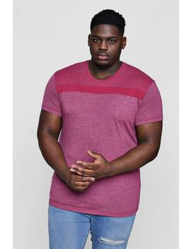 Big And Tall Stripe Panel T Shirt by Boohoo