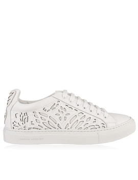 Liara Low Top Trainers by Sophia Webster