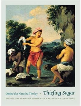 Thiefing Sugar: Eroticism Between Women In Caribbean Literature (Perverse Modernities) by Omise'eke Natasha Tinsley