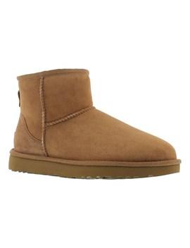 Women's Classic Mini Ii Chestnut Boots by Ugg