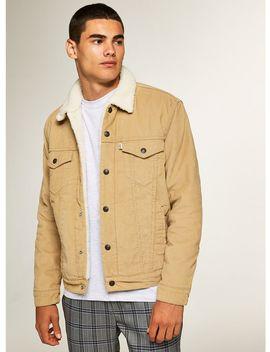 Levi's Brown Corduroy Sherpa Lined Denim Jacket by Topman