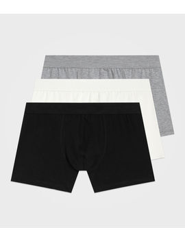 3 Pack Morrall Boxers by Allsaints