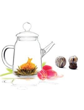 Tea Beyond Blooming Teapot Gift Set Duo Kj Gfs2001 1 by Tea Beyond