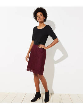 Scalloped Lace Pencil Skirt by Loft