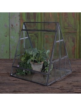 Wrought Studio Migliore Glass Terrarium by Wrought Studio