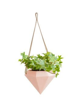 Wrought Studio Chloris Diamond Hanging Planter & Reviews by Wrought Studio