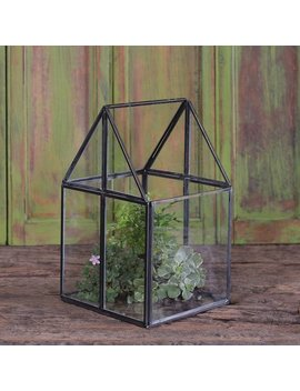 Wrought Studio Migliore House Glass Terrarium by Wrought Studio