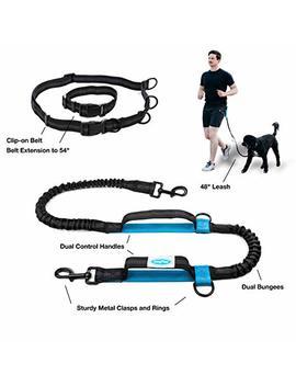 Dazy Mae Hands Free Dog Leash, Extendable Waist Belt Bungee Leash Walking Running Your Dog, Cord Leash Reflective Stitching by Dazy Mae